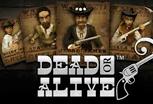 играть в игровой автомат Dead or Alive